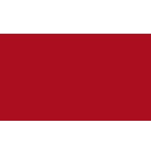 SingularDTV ico